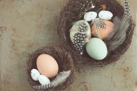 KreaKids Osterwerkstatt Kreatives zu Ostern